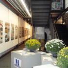 BRAU1, Poster Exhibition, Santa Verdiana, Università di Firenze.