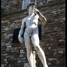 Firenze, copia del David di Michelangelo all'ingresso di Palazzo Vecchio.