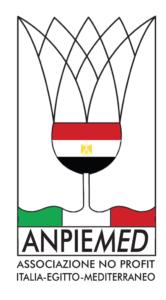 Logo ANPIEMED, Associazione no profit Italia-Egitto-Mediterraneo.